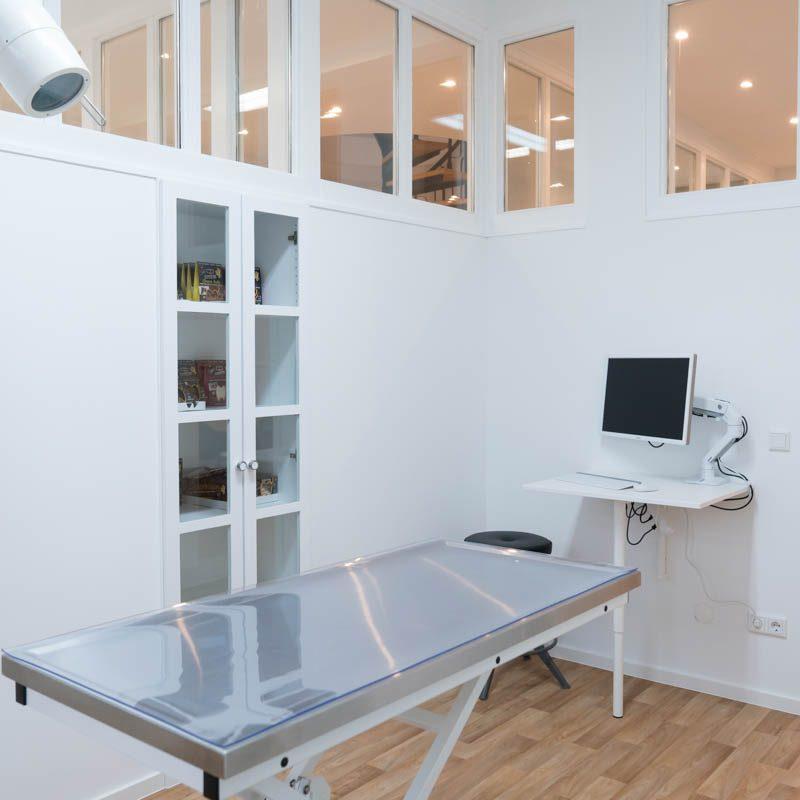 Tierarzt-Verberg-29